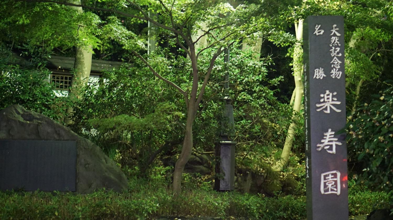 【楽寿園】四季によって変わる庭園と三島市の歴史を知れる駅前の自然公園