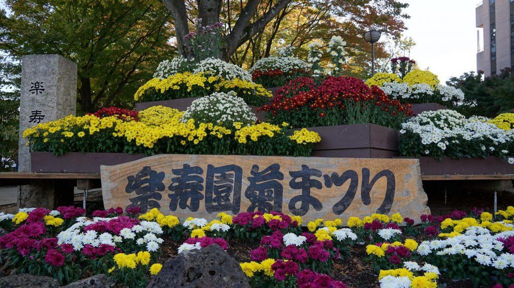 2019年10月30日(水)~11月30日(土)楽寿園「第67回 菊まつり」